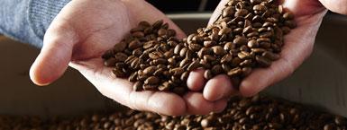 La gamme de produits du Fou Du Grain